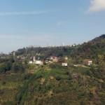 kusando (1)