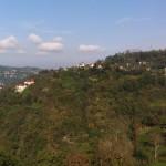 kusando (3)